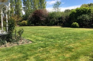 lawn 1 1 1
