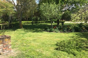 lawn-2-1