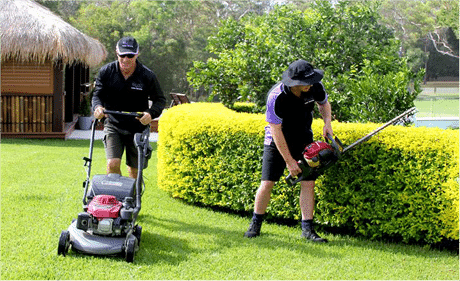 Express Lawn Mowing