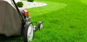 lawnmowing 1024x490 1